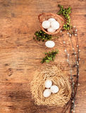 Easter composition of eggs, catkins and boxtwood Stock Photo