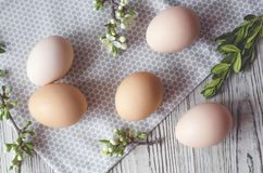 Easter composition of eggs, green twigs and cloth napkin stock images
