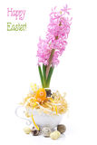 Easter composition with eggs and pink hyacinth Royalty Free Stock Photos