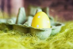 Easter composition with green egg box filled with a yellow fake egg with white dots.  royalty free stock photo