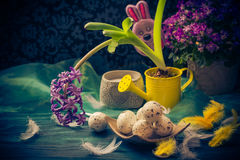 Easter composition hyacinth Easter eggs feathers Royalty Free Stock Image
