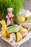 Easter composition of the macaroon, birds and grass Stock Images