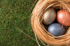 Easter composition. Nest with color eggs lie on a moss. Top view. Easter composition royalty free stock photos