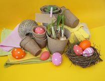 Easter. Easter composition with the nest and eggs. Potted plants, tools, linen towel, gloves. Stock Photo