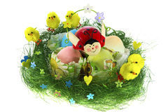 Easter composition with painted eggs, funny chickens and ladybug Royalty Free Stock Photo