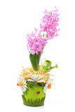 Easter composition with pink hyacinth Royalty Free Stock Photography