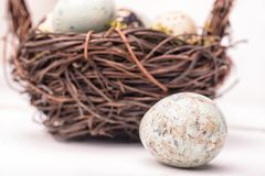 Easter composition with quail eggs in basket on a wooden backrou. Nd. Top view. Holiday card royalty free stock photos