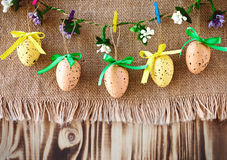 Easter composition of quail eggs on burlap. And wooden boards Stock Images