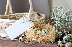 Easter composition with quail eggs, flowers, basket, and place for inscription Stock Photos