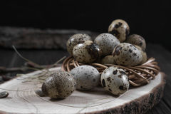 Easter composition with quail eggs and twigs of willow blossom. Composition with quail eggs and twigs of willow blossom. Nest with quail eggs, Easter concept Stock Photo