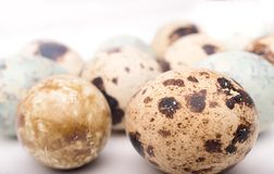 Easter composition with quail eggs on a wooden backround. Top vi. Easter background with quail eggs on a white wooden background. Easter composition with quail stock photo