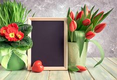 Easter composition with red stone heart and red Spring flowers o Royalty Free Stock Photos