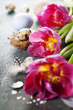 Easter composition with tulips Stock Photography