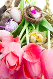 Easter composition with tulips and decorative eggs Royalty Free Stock Photo