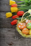 Easter composition with tulips Royalty Free Stock Photos