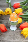Easter composition with tulips Royalty Free Stock Photography