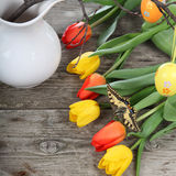 Easter composition with tulips Royalty Free Stock Image