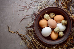 Easter composition with various natural coloured eggs Stock Photography
