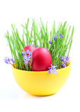 Easter composition on the white background. Stock Photo
