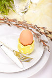 Easter compositions Royalty Free Stock Image