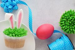 Easter concept with bunny ears cupcakes, blue ribbon, pink egg stock photography