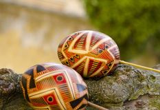 Easter concept. Colorful Easter eggs on the tree bark Royalty Free Stock Photo