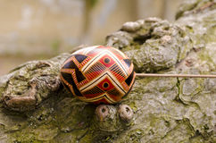 Easter concept. Colorful Easter eggs on the tree bark Royalty Free Stock Photography