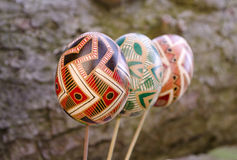 Easter concept. Colorful Easter eggs on the tree bark Stock Images