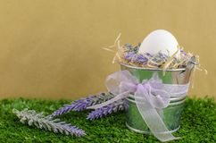 Easter concept - the egg in a decorative pail on the grass with Decker on a bright background.  Royalty Free Stock Photography