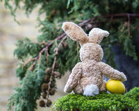 Easter concept. Lonely teddy rabbit with a yellow egg sitting ba Royalty Free Stock Photos