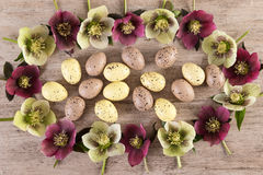 Easter concept Spring flowers creative arrangement on rustic light brown background royalty free stock photo