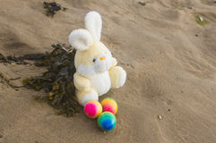 Easter concept, teddy rabbit with colored eggs on the beach, vac. Toy teddy bunny with colored eggs and seaweed, on the wet sand at the seaside Royalty Free Stock Photo