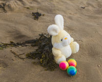 Easter concept, teddy rabbit with colored eggs on the beach, vac. Toy teddy bunny with colored eggs on the wet sand at the seaside Royalty Free Stock Image