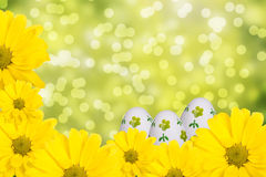 Easter concept. Yellow flowers and Easter eggs Stock Photo