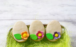 Easter cookie in shape of egg Stock Image