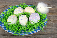 Easter cookies with chick Royalty Free Stock Photo