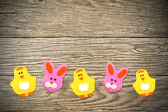 Easter cookies on wood background Stock Images