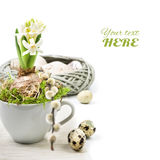 Easter corner composition with white hyacinth in white cup Stock Images