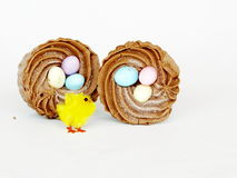 Easter Egg Cupcakes and Yellow Chick Royalty Free Stock Photo
