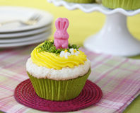 Easter cupcakes Stock Photos