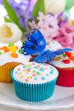Easter cupcakes with butterfly Stock Image