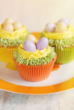 Easter cupcakes decorated with eggs in nest Stock Images