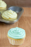 Easter Cupcakes. Cupcakes frosted in pastel colors for Easter or Spring Royalty Free Stock Photos