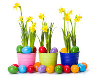 Easter with daffodils and colorful painted eggs Stock Photos