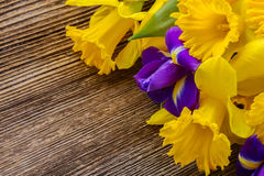 Easter daffodils and irise Royalty Free Stock Photography