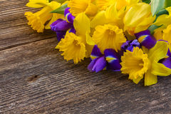 Easter daffodils and irise Royalty Free Stock Photo