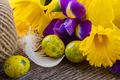 Easter daffodils and irise Royalty Free Stock Images