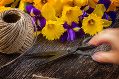 Easter daffodils and irise Stock Images