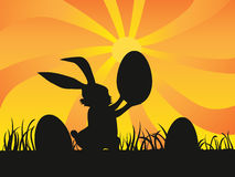 Easter day background of rabbit holding egg. A rabbit holding a egg at sunset for easter day Royalty Free Stock Photo