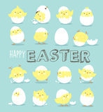 Easter day greeting card. With cute little chicks Royalty Free Stock Image
